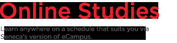 Online Studies banner